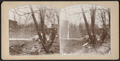 Bronx River, West Farms (...), from Robert N. Dennis collection of stereoscopic views.png