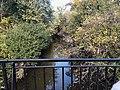 Bronx River Forest in Norwood Bronx IMG 2756 HLG.jpg