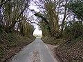 Bruisyard Road, Peasenhall - geograph.org.uk - 1744197.jpg
