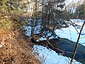 Bryansky District, Bryansk Oblast, Russia - panoramio (26).jpg