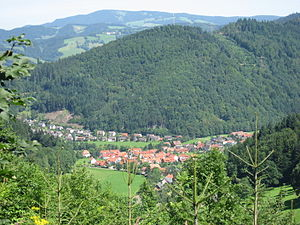 Buchenbach - The town of Buchenbach from the south