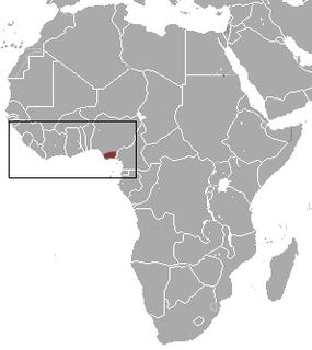Buettikofers shrew Species of shrew