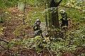 Bundes khd uebung lentia bfkuu denkmayr 063 (48848270443).jpg