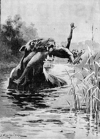 Bunyip - Drawing of a bunyip in 1890