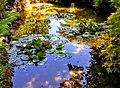 Butchart Gardens - Victoria, British Columbia, Canada (29352680805).jpg