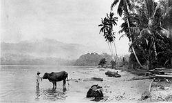 COLLECTIE TROPENMUSEUM Aan het Ranau-meer in Zuid-Sumatra augustus 1926. TMnr 60014496.jpg