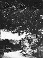 COLLECTIE TROPENMUSEUM Stenen (dier)figuren aan de voet van een van de Prambanan tempels Midden-Java TMnr 60018340.jpg
