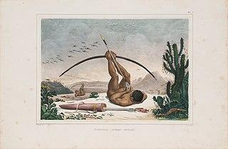 Cabocle, (indien civilisé)