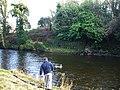 Camowen River, Omagh - geograph.org.uk - 692951.jpg