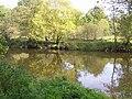 Camowen River - geograph.org.uk - 1532582.jpg