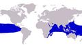 Caranx melampygus distribution.png