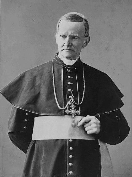 Cardinal McCloskey Napoleon Sarony