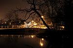 Carshalton night Bullets-4465.jpg