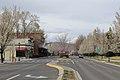 Carson City - panoramio (80).jpg