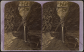 Cavern cascade and long staircase, (Glen) Alpha, by Gates, G. F. (George F.) 2.png