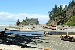 Cedar Creek Abbey Island Ruby Beach.jpg