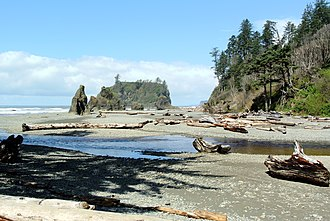 Olympic National Park - Cedar Creek and Abbey Island from Ruby Beach