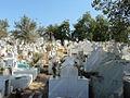 Cementerio Quillota.jpg