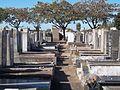 Cementerio Tablada parte vieja 2.jpg