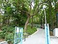 Central Kwai Chung Park.JPG