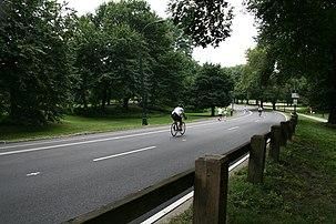 Central Park%27s roads.jpg