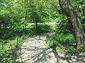Central Park May 2019 70.jpg