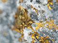 Chalcopyrite (12244025214).jpg