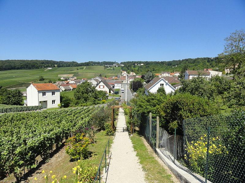 Vue du village de Champillon.
