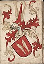 Chini - Chiny - Wapenboek Nassau-Vianden - KB 1900 A 016, folium 23r.jpg