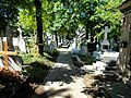 Cimitirul Bellu 20.jpg