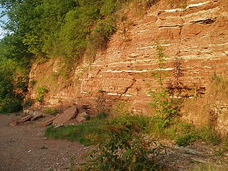 River Trent -  Mercia Mudstone formation at Gunthorpe