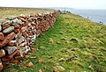 Clifftop dyke and stile - geograph.org.uk - 1279068.jpg