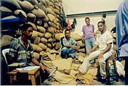 Coffee workers Dili.jpg