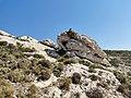Collines au dessus de Marseille 13.jpg