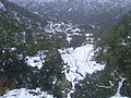 Collo en hiver avec de la neige-Ville de skikda*Vue2.JPG