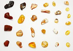 Baltic amber. Polished stones