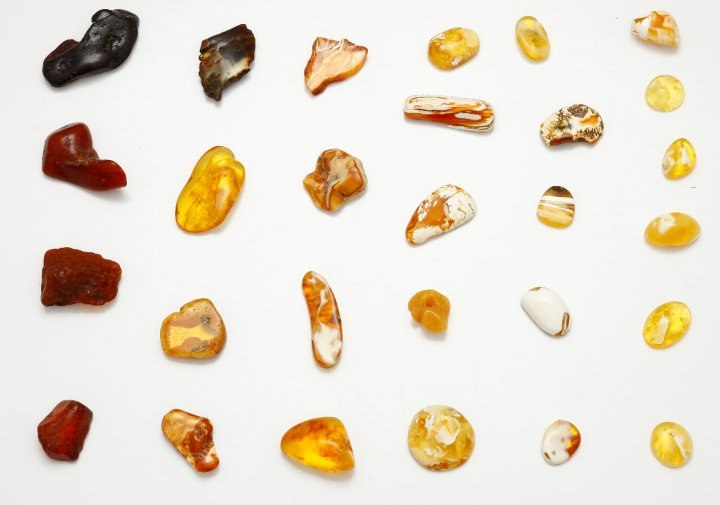 Colours of Baltic Amber