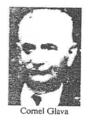 Cornel Glava p 230.png