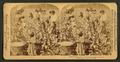 Cotton is king - A plantation scene, Georgia, by Strohmeyer & Wyman 5.png