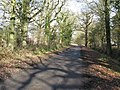 Country lane between Copsale Court and Lockyers Farm - geograph.org.uk - 1151687.jpg