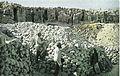 Courcy tranchées et abris dans un entonnoir 1915.jpg