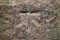 Cut Bench Mark, Wetherby Parish Church Gatepost (geograph 6710066).jpg