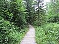 Dūkštų sen., Lithuania - panoramio (60).jpg
