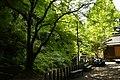 Dai Jingu(Cha Soumei)-Shrine in Yuyadani, Ujitawara, Kyoto August 5, 2018 36.jpg