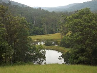 Numinbah Valley - Dams along Pocket Road, 2016