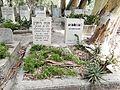 Degania Alef Cemetery Ruppin.JPG
