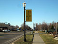 Delhi Charter Township Holt Michigan Pole Banner 2.jpg