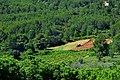 Descobreix Penedès, Torrelles de Foix.jpg