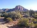 Devil's Bridge Trail, Sedona, Arizona - panoramio (20).jpg