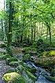 Die Gaishölle (Sasbachwalden) jm53105 ji.jpg